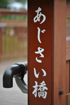 幸手権現堂公園20110601_005