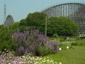 東武動物公園masae001