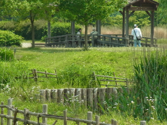 宮代町「新しい村」masae0024
