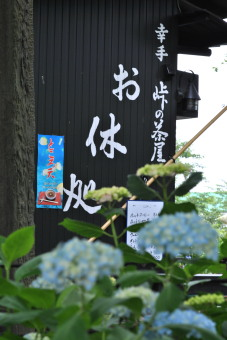 2011幸手あじさいまつり001
