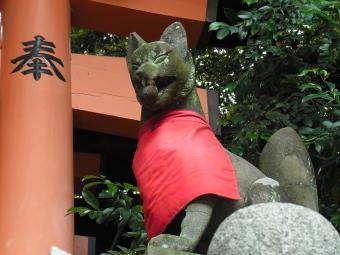 伏見稲荷2011_03