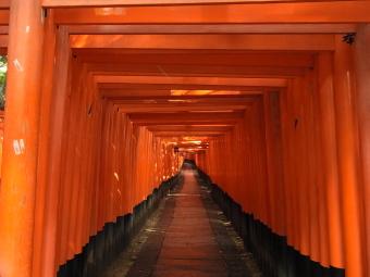 伏見稲荷2011_02