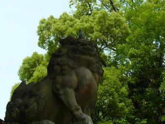 京都八坂神社2011_01