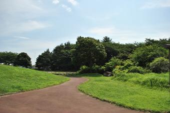 久喜市菖蒲町 「しらさぎ公園」2011_002