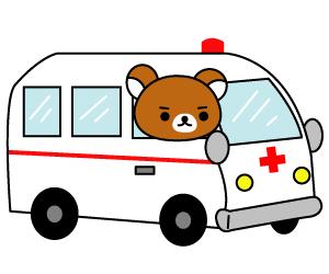 救急車を運転しているクマ