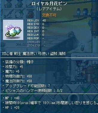 20110306_1.jpg