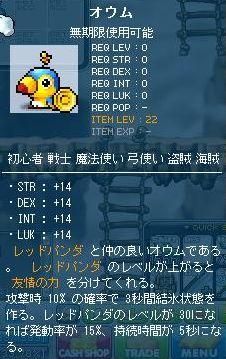 20110307_1.jpg