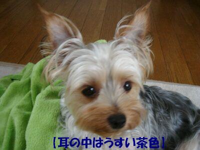 PHOTO512.jpg