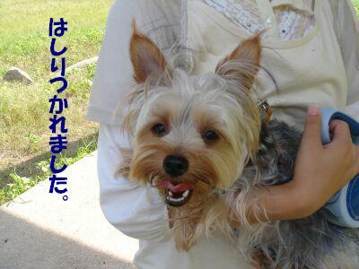 PHOTO558.jpg