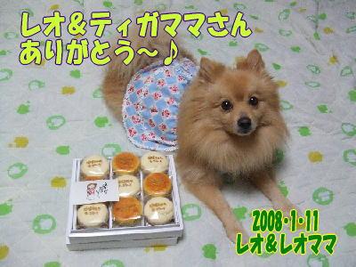 レオティガママさんからチーズケーキ