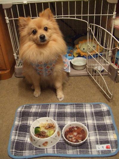 もう、食べてもいいですかぁ~