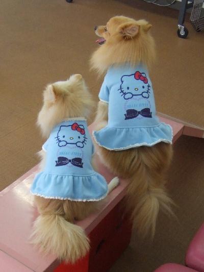 キティちゃんのお洋服・・・オソロ~