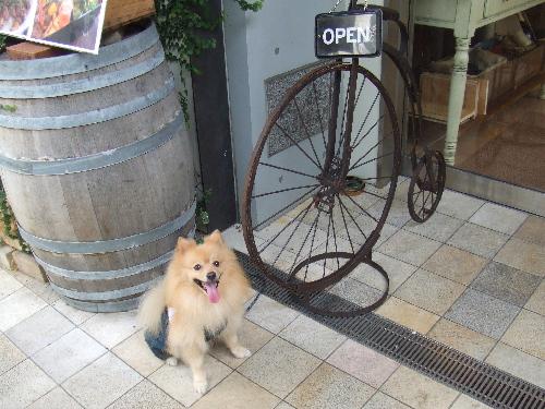 自転車の前で