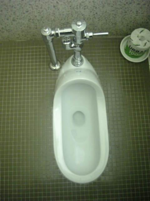 和式便所の水流すレバー、あれって足で押すってマジ????