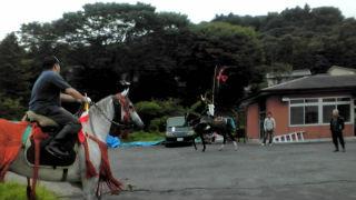 相馬市内に入るとさっそく馬を発見!