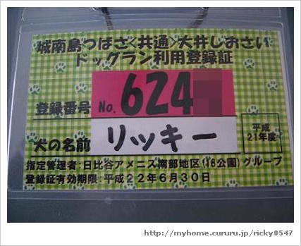 image2181993.jpg