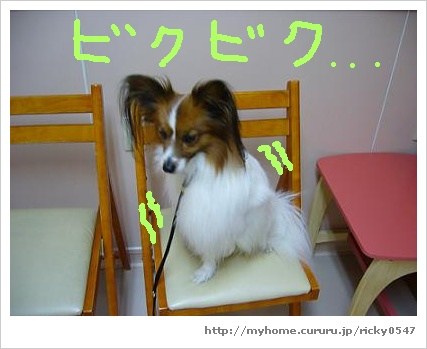 image7205015.jpg