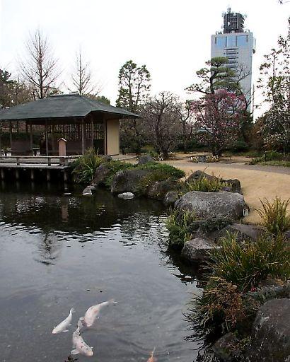 紅葉山庭園梅景観-2