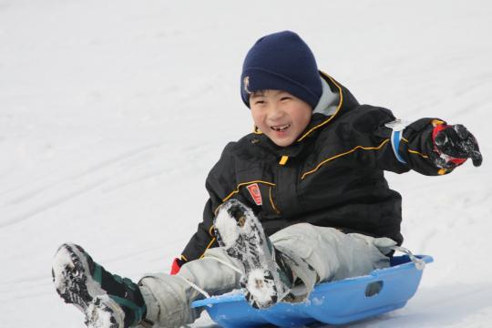 小岩井農場のいわて雪まつり2011