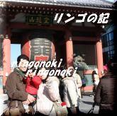 初詣2011③