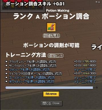 mabinogi_2008_08_24_001AAA.jpg