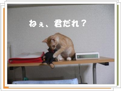 P1000734(誰?)