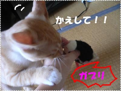P1010069(かえして)