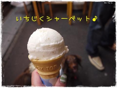 P1090327.jpg