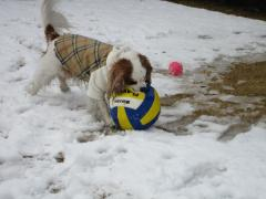 ボール大きいね。