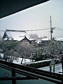 ベランダ雪