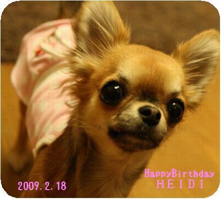 heidi1birth6.jpg