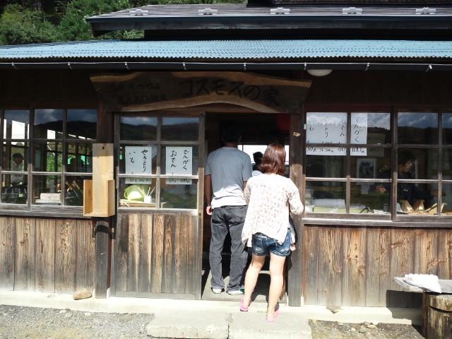 夏井川の会、コスモス祭り