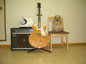 ロナとギター