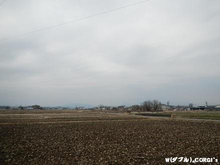 2012030801.jpg