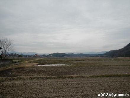 2012032101.jpg