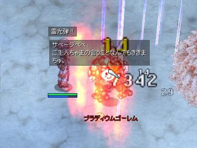 20110119d.jpg