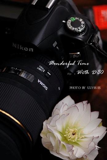 My Camera D80♪♪