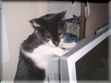 PCの後ろ