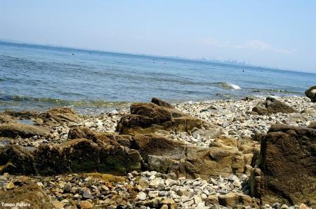 海岸02。