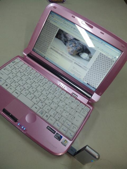 DVC00446.jpg