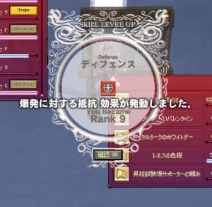 mabinogi_2008_10_13_028.jpg