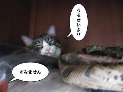 IMG_0543_1.jpg