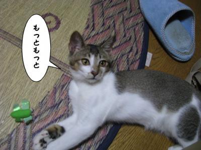 IMG_0648_1.jpg