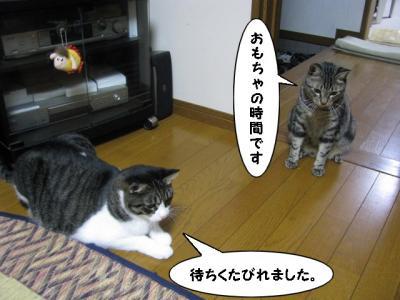 IMG_0650_1.jpg