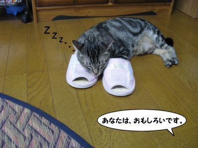 IMG_0793_1.jpg