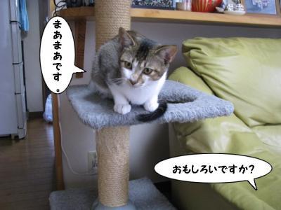 IMG_0794_1.jpg