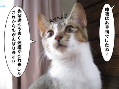 IMG_0808_1.jpg