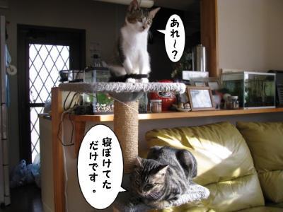 IMG_0846_1.jpg