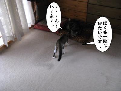 IMG_0980_1.jpg