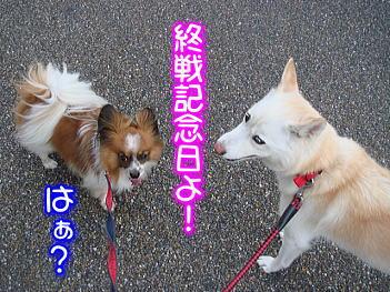 8.15終戦記念日